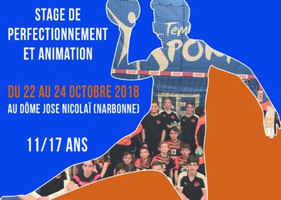 Stages Handball 11 Print